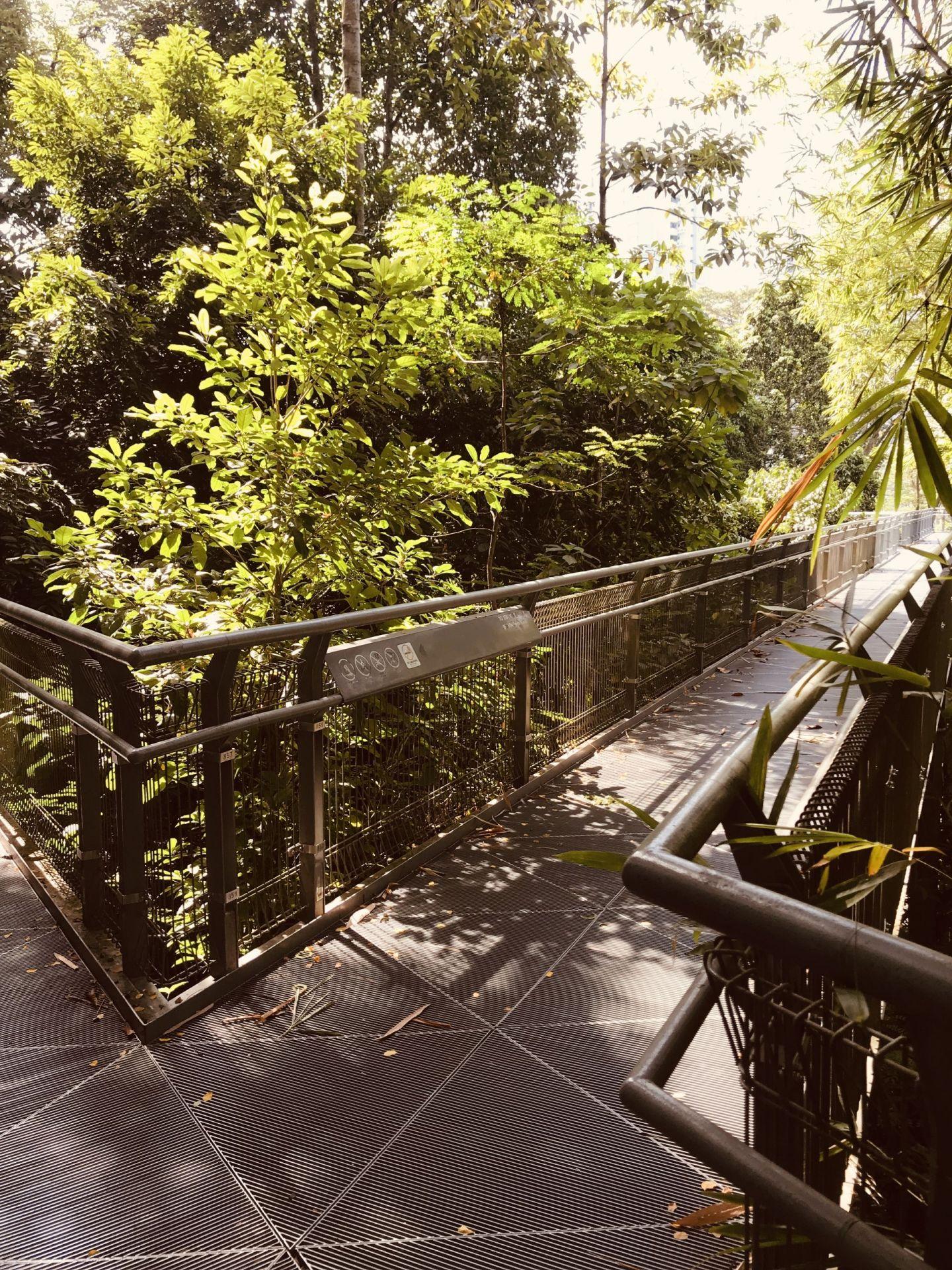 Southern-ridges-Telok-Blangah