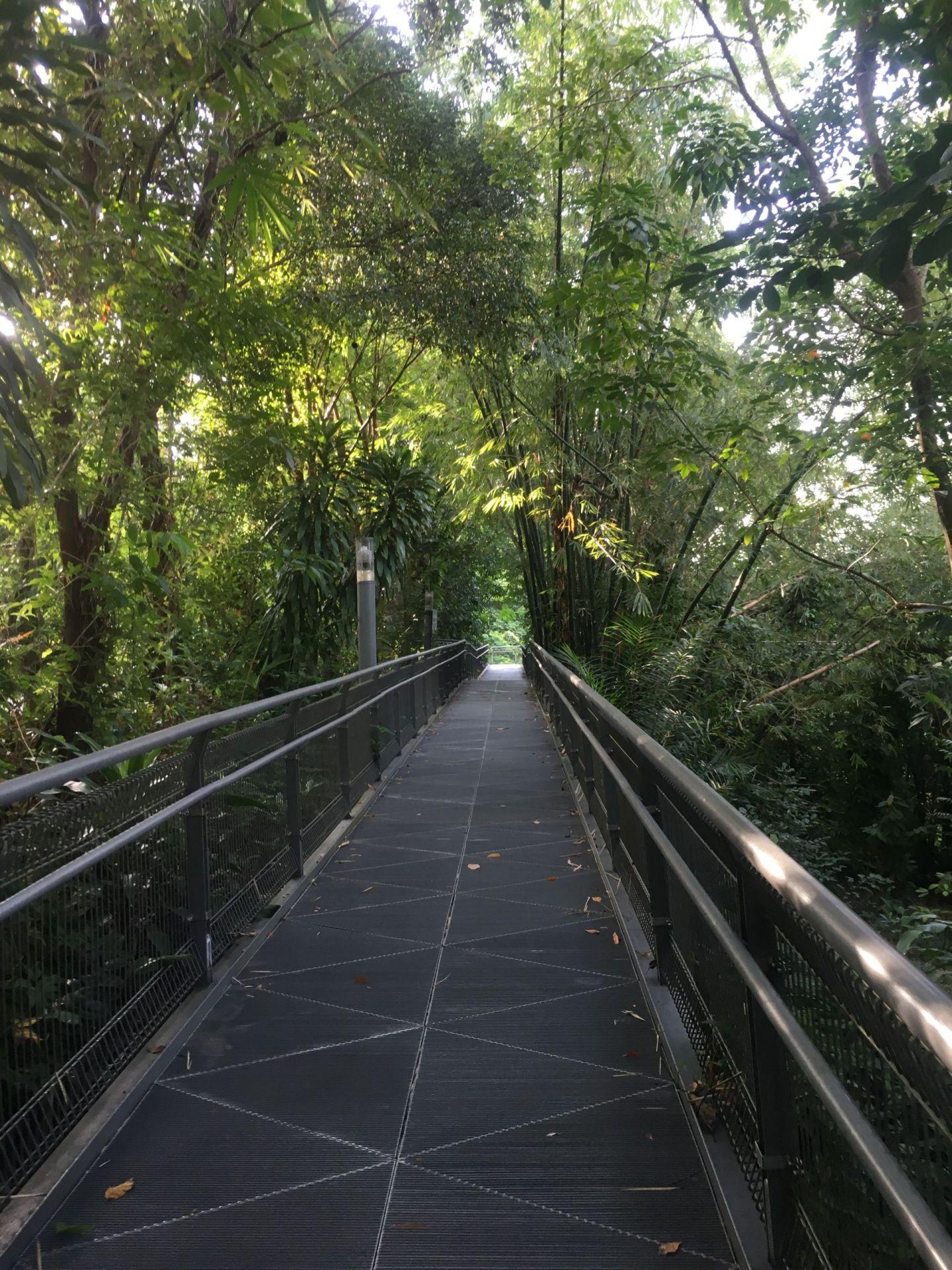 Telok-Blangah-walk