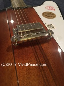 "Jim Pearson's Epiphone Joe Bonamassa Firebird I ""Treasure"" FB720 Pickup Front"