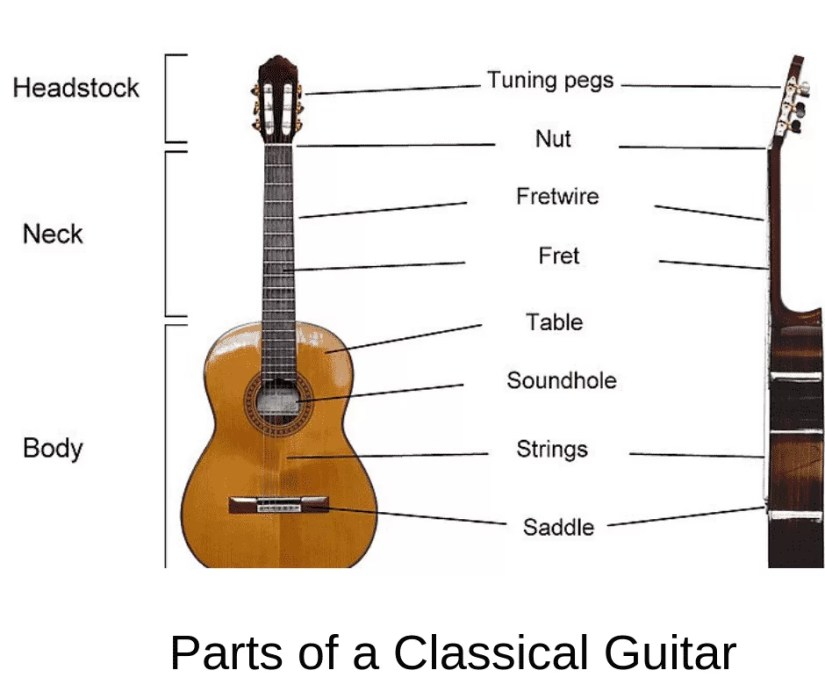 Parts of a Classical Guitar