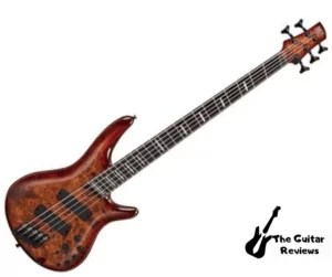Ibanez Bass Workshop SRMS805: Best Bass Guitar Under $1000