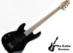 Davison Guitars Electric Bass for Beginner