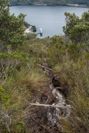 Mount Sprent track