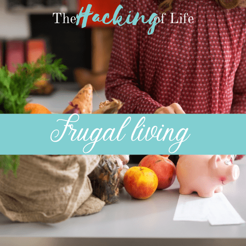 Frugal Living Banner