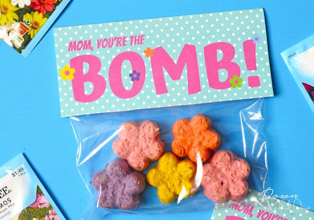 Mother's Day DIY Seed Bombs Gift by downredbuddrive.com