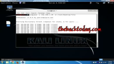 Photo of SidGuesser Vulnerability Analyer in Kali Linux