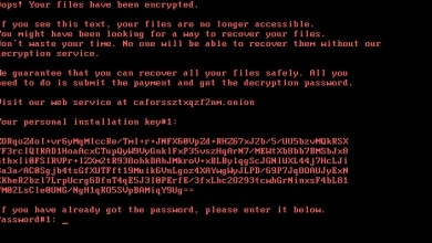 Photo of Bad Rabbit Ransomware Attack – Here's What You Need To Know