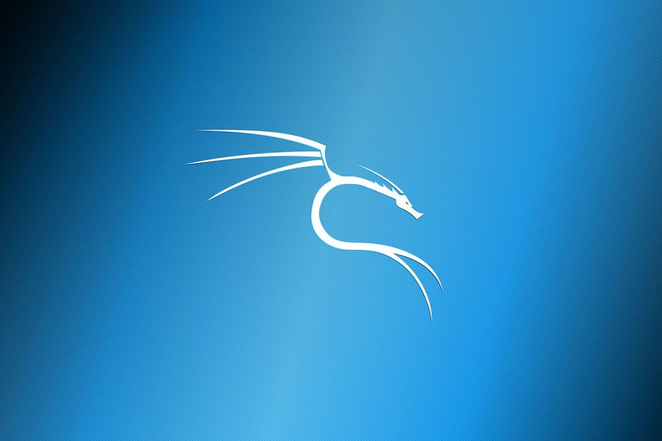 Everything You Need To Know About Kali Linux