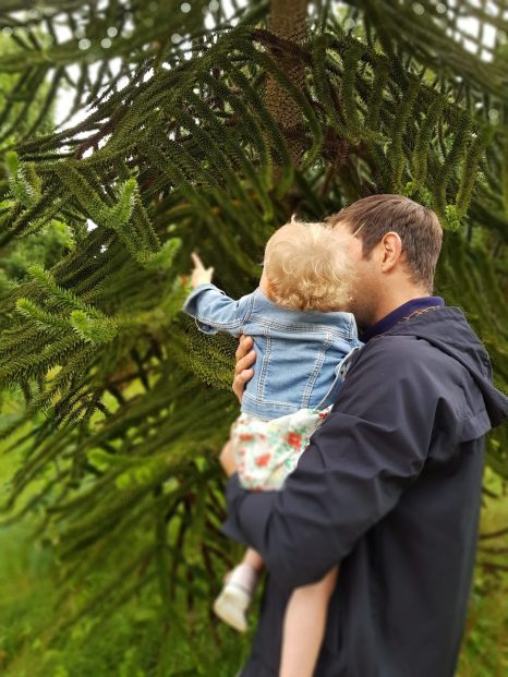 Dad holding daughter pointing to tree both backs to camera