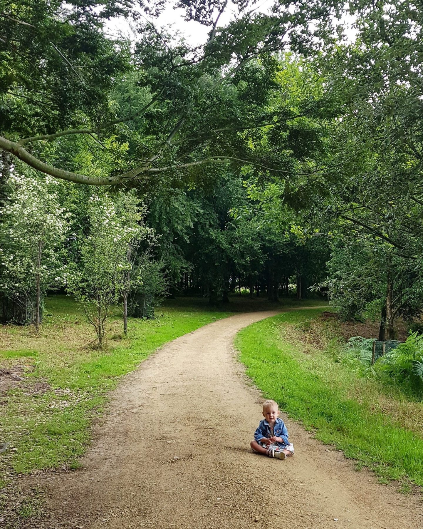 one year old girl sitting on empty woodland path