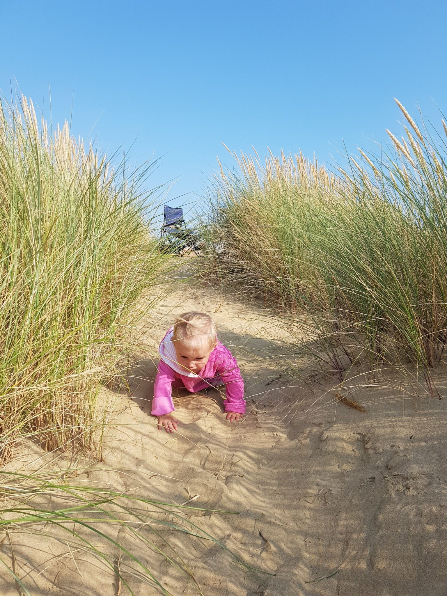 little girl in pink crawling in sand dunes