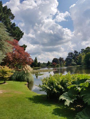 Sheffield Park and Garden pond in summer