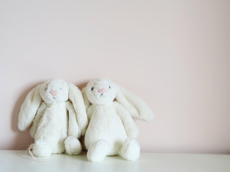 Big Sister / Little Sister? {Baby Loss Awareness Week}