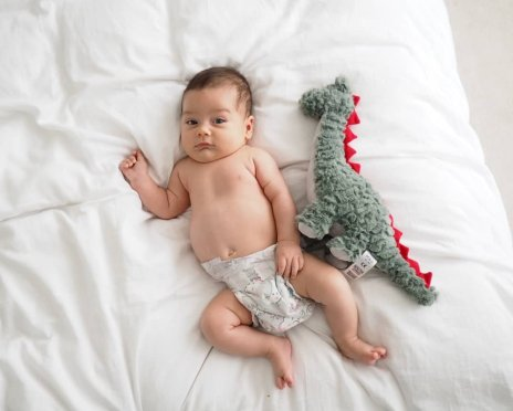 8 week old baby boy with dinosaur| The Halcyon Years