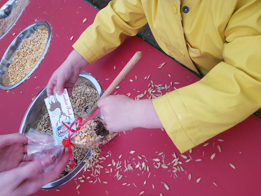 Toddler girl in yellow coat making reindeer food at Tulleys Farm at Christmas