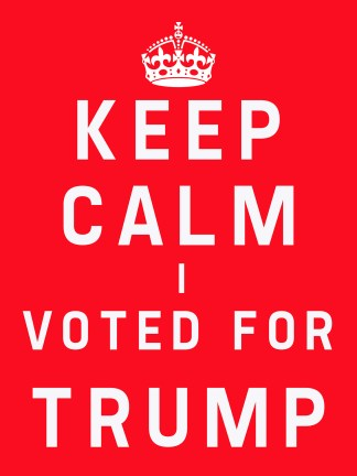 keep calm i voted for trump poster