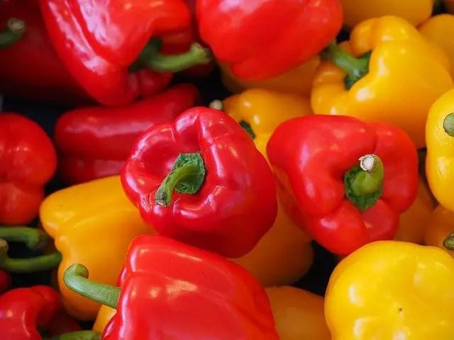 can cats eat bell pepper