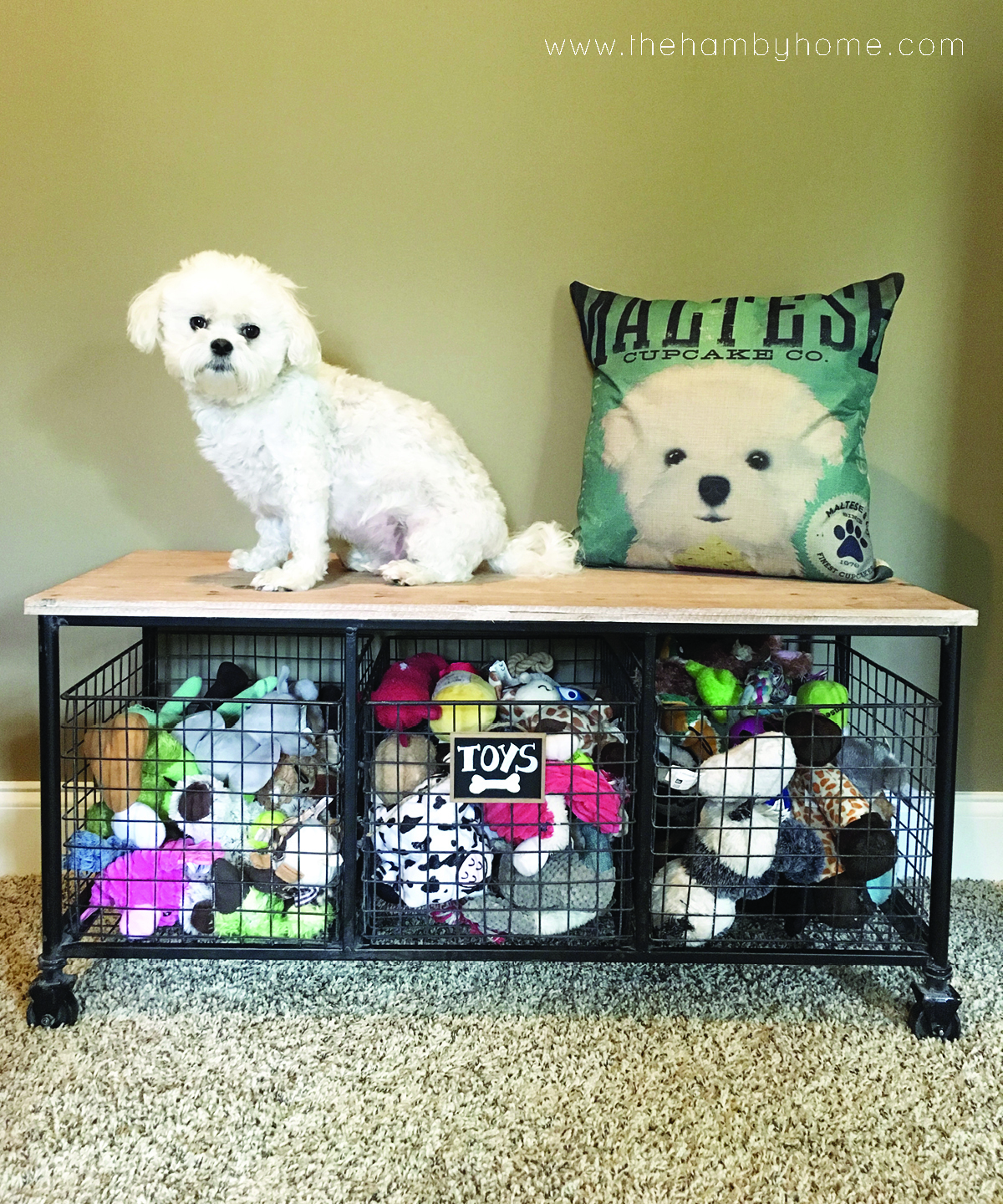 Industrial Dog Toy Storage2