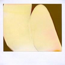 Lisa McCarty, Developer Drawing 050841153-0211224244, Polaroid instant film. http://lisamccarty.com