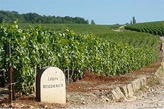 Louis Roederer, reconocido en Francia