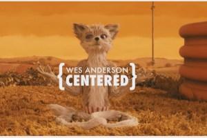 Wes Anderson, un director muy centrado