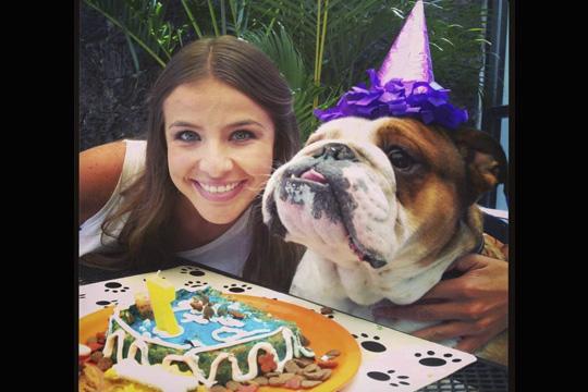 ¿Es el cumpleaños de la mascota del hogar? Celébralo