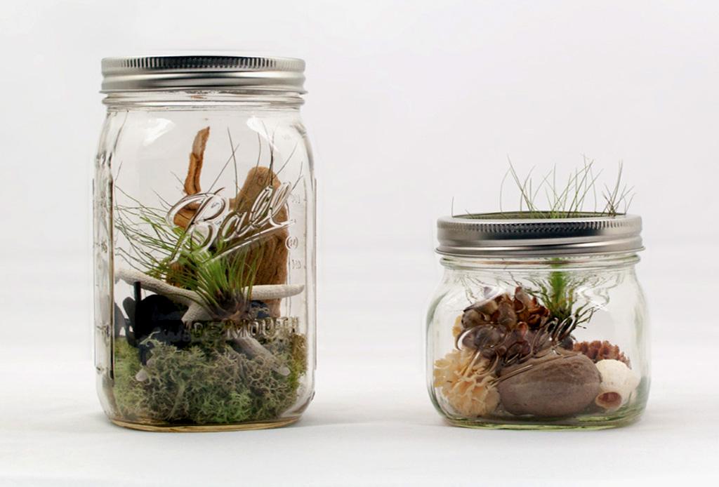 DIY: Haz tu propio terrario en un Mason Jar