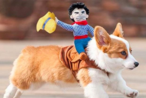 Los disfraces para perro más divertidos para este Halloween - disfgraz-perrito-1