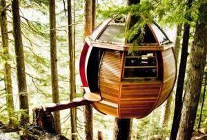 7 opciones de hospedaje para los amantes del ecoturismo