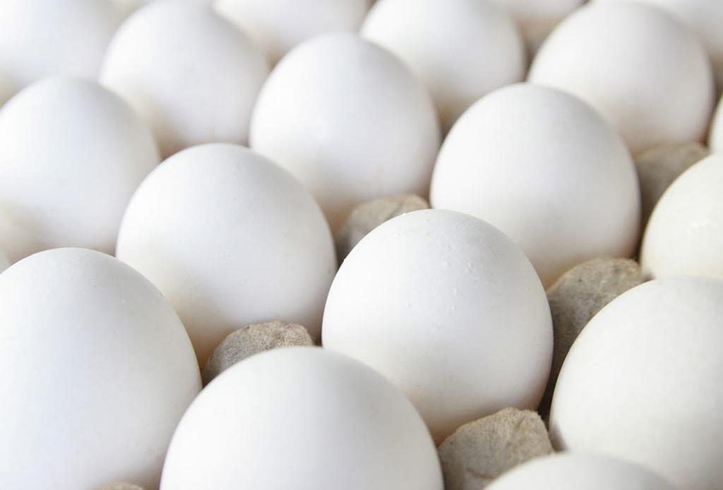 8 alimentos que te ayudarán a tener el pelo más largo - huevo