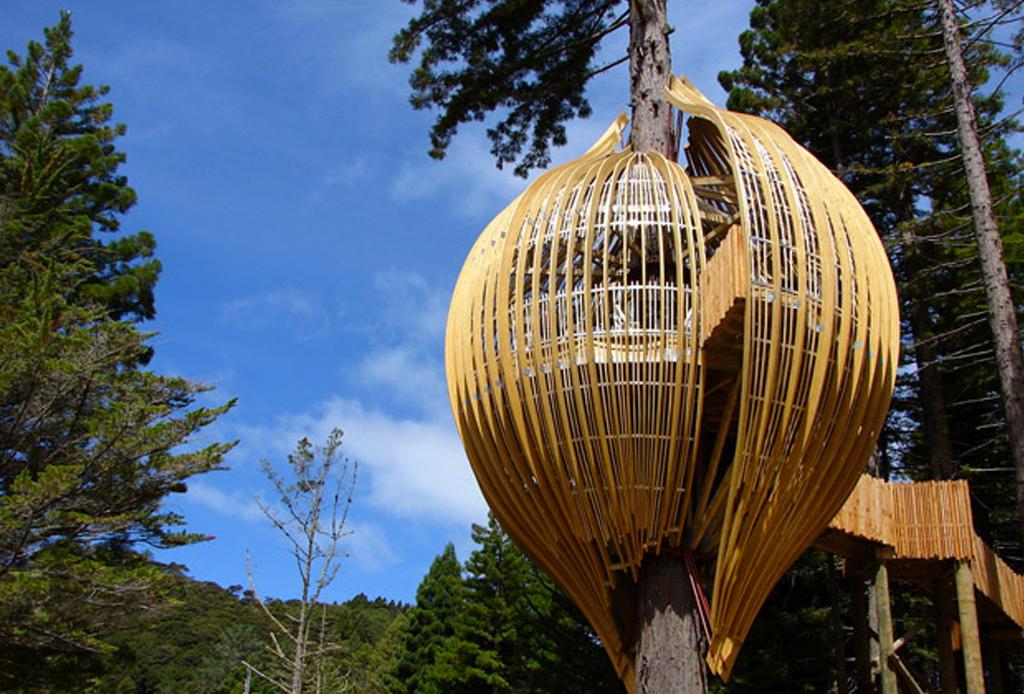 7 opciones de hospedaje para los amantes del ecoturismo - redwood-casa-del-arbol