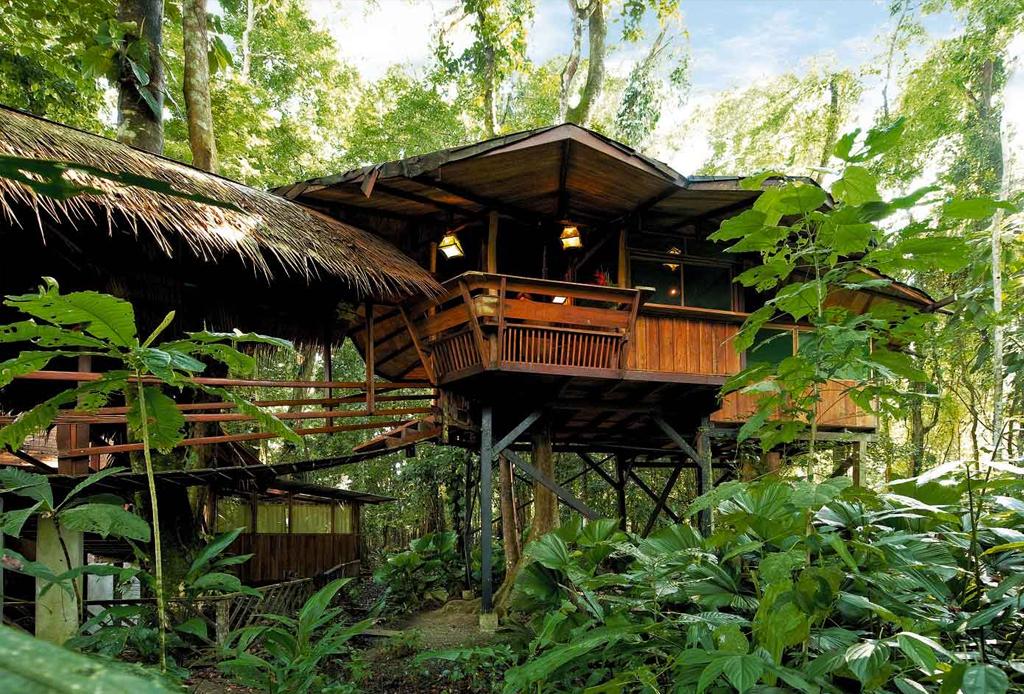 7 opciones de hospedaje para los amantes del ecoturismo - tree-house-costarica
