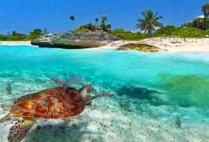Los 8 musts para disfrutar de Playa del Carmen al máximo