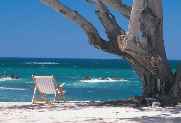 Los 7 mejores destinos para practicar surf en México - punta-mita-1024x694