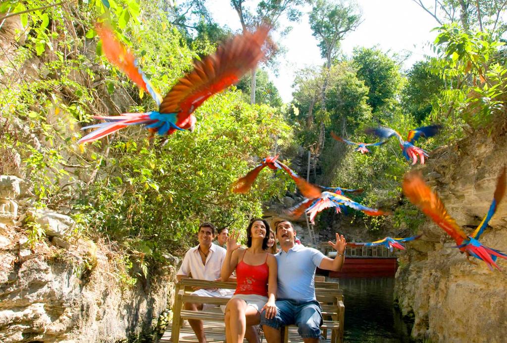 Xenses: El nuevo parque de experiencias de Xcaret - xenses-4