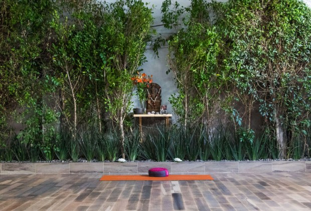 Los 6 estudios de yoga más exclusivos de la CDMX - yoga-1024x694