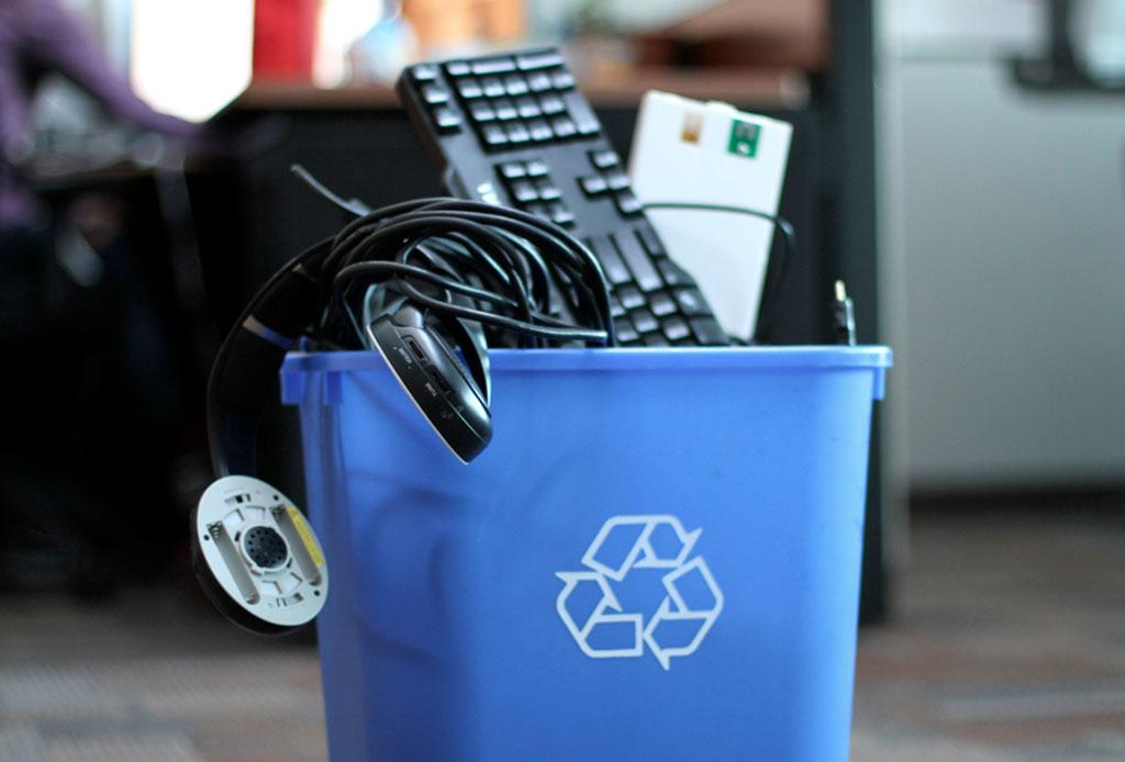 12 iniciativas ecológicas en la CDMX para tener en la mira - ecologia-cdmx-6