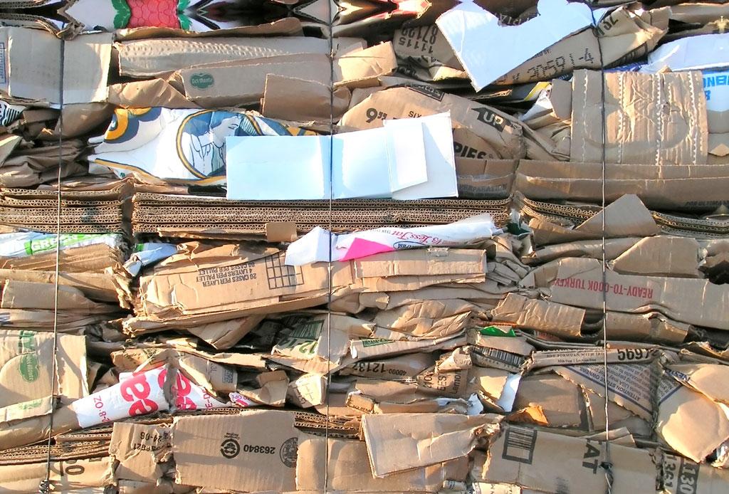 12 iniciativas ecológicas en la CDMX para tener en la mira - reciclar