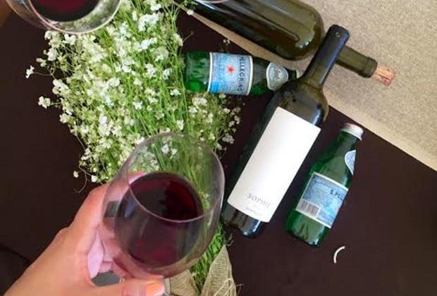 4 etiquetas de vino totalmente mexicano que debes probar - santaelena2-1024x694