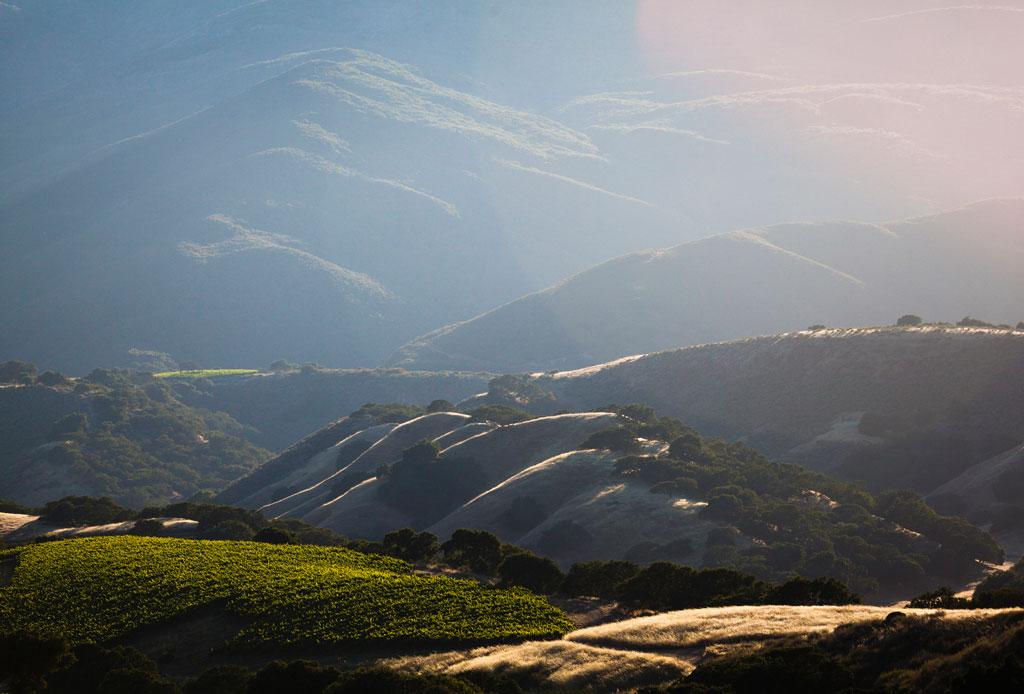 El tour de vinos de California que no te puedes perder - vinos-2