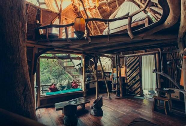 Estas son las 9 casas más exóticas que puedes rentar en Airbnb - casa-del-arbol-1024x694