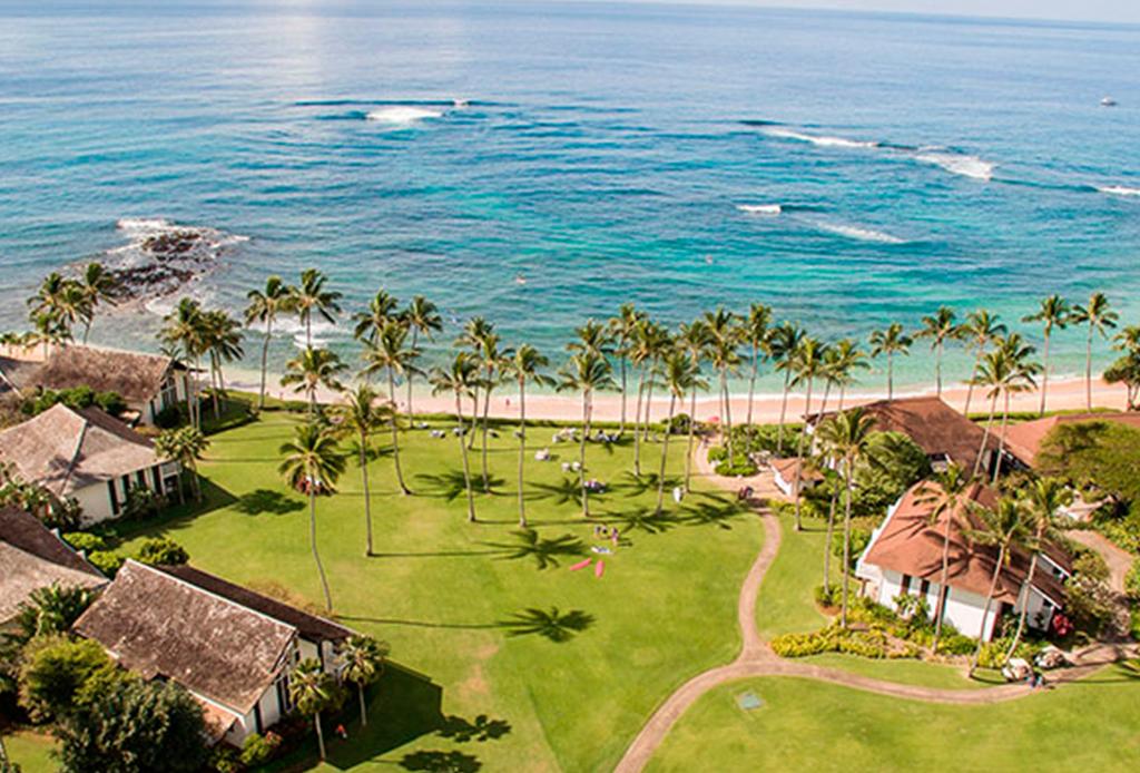 Los surf camps que nadie se puede perder - hawaii-1