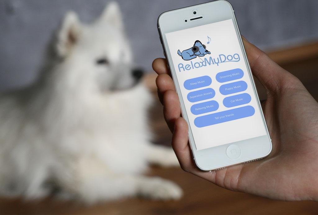 Una app hará que tu mascota esté relajada