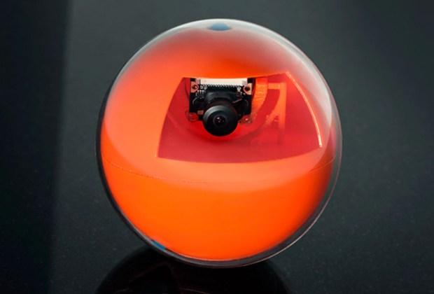 PlayDate: la pelota para jugar con tu mascota aún estando lejos - playdate-1024x694