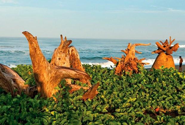 playa-madresal