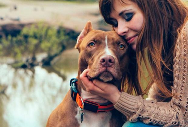 6 beneficios de tener una mascota en casa - estres-1024x694