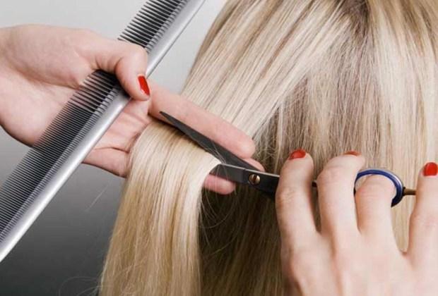 ¿Lograste tener pelo largo? Te decimos cómo mantenerlo - pelo-largo-corte-1024x694