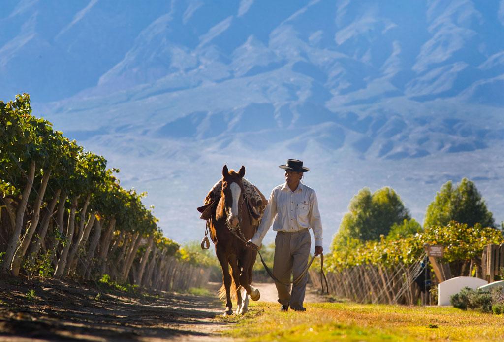 Las ruta del vino en Argentina para verdaderos conocedores