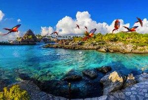 5 tours alternativos que puedes hacer en la Riviera Maya y nunca te imaginaste