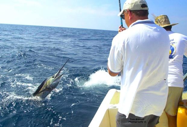 7 razones para que tu próxima vacación sea en Ixtapa Zihuatanejo - ixtapa-zihuatanejo-pesca-1024x694